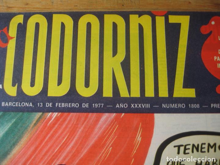 Coleccionismo de Revistas y Periódicos: REVISTA LA CODORNIZ Nº 1808 - 13 FEBRERO 1977 - PORTADA MADRIGAL - Foto 2 - 198282053