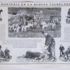 Colecionismo de Revistas e Jornais: 1911 HOJAS REVISTA JAÉN ANDUJAR MONTERÍA EN LA DEHESA DE VALDELAGRANA, REHALAS PERROS CAZADORES. Lote 204264025