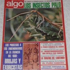 Coleccionismo de Revistas y Periódicos: REVISTA ALGO Nº 281 DEL AÑO DE 1975. Lote 205326538