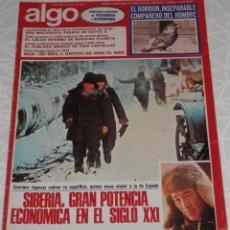 Coleccionismo de Revistas y Periódicos: REVISTA ALGO Nº 298 DEL AÑO DE 1976. Lote 205326651