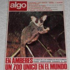 Coleccionismo de Revistas y Periódicos: REVISTA ALGO Nº 213 DEL AÑO DE 1972. Lote 205326993