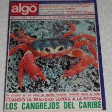 Coleccionismo de Revistas y Periódicos: REVISTA ALGO Nº 272 DEL AÑO DE 1975. Lote 205327162