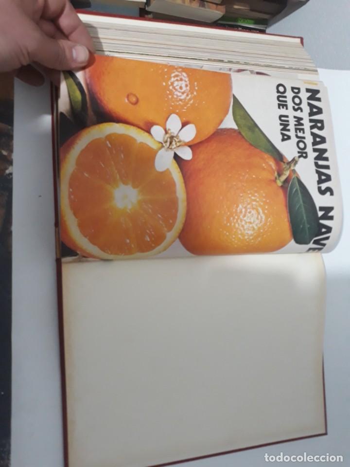 Coleccionismo de Revistas y Periódicos: Revistas encuadernadas- cocina y hogar/ 1974,del n°129 al 140 - Foto 16 - 205442017