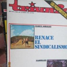 Collezionismo di Riviste e Giornali: TRIUNFO REVISTA Nº 709 - 22-08-1976 RENACE EL SINDICALISMO . CAMPO ANDALUZ. Lote 206978223