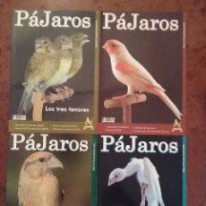 Coleccionismo de Revistas y Periódicos: CUATRO REVISTAS PÁJAROS. AÑO 2007 COMPLETO. Lote 206997555