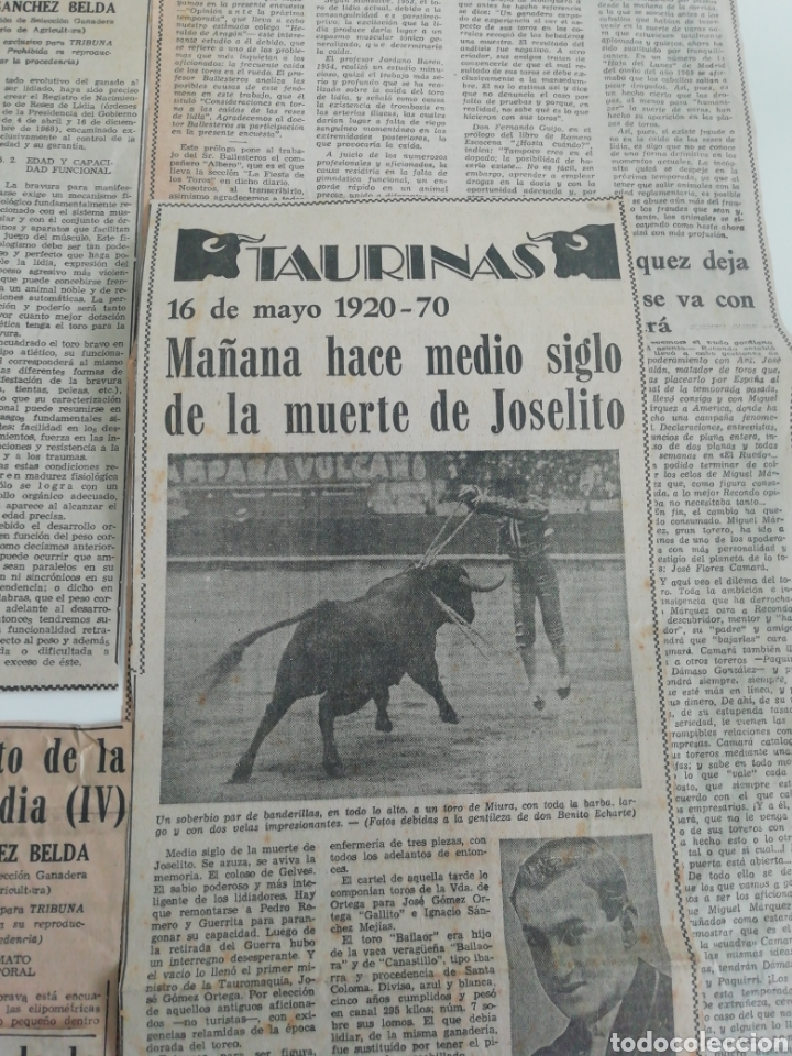 Coleccionismo de Revistas y Periódicos: Antiguos recorte de periódicos temática de toros,años (60/70) - Foto 4 - 207300453