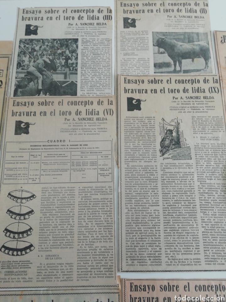 Coleccionismo de Revistas y Periódicos: Antiguos recorte de periódicos temática de toros,años (60/70) - Foto 5 - 207300453