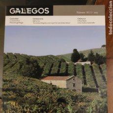 Coleccionismo de Revistas y Periódicos: GALLEGOS 2013. Lote 210156501