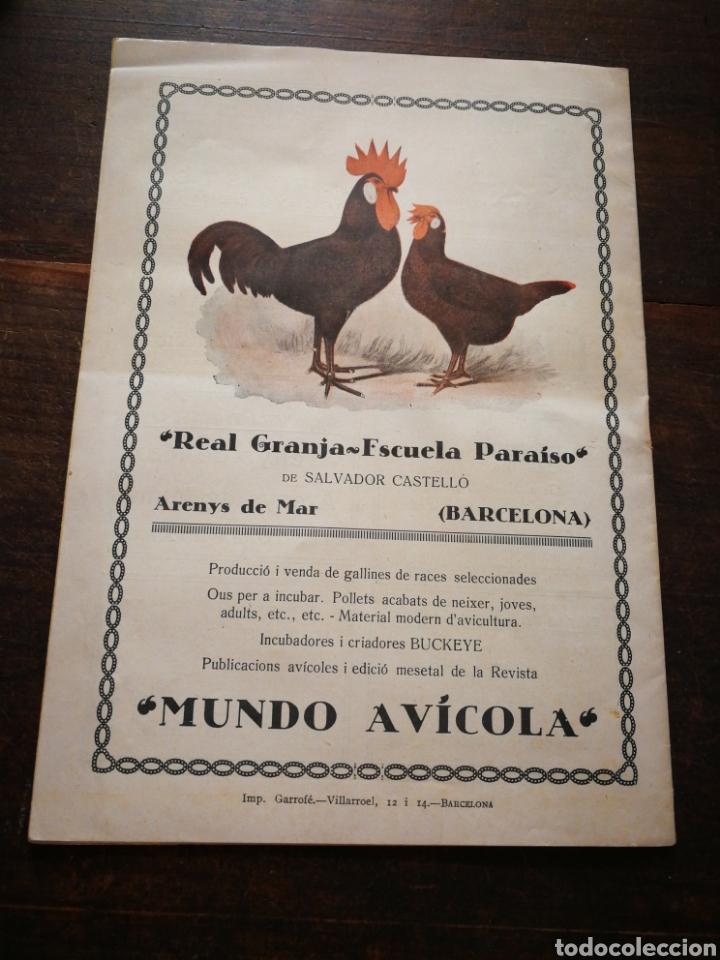 Coleccionismo de Revistas y Periódicos: REVISTA JOVENTUT CATALANA- PORTADA PILAR ALONSO, ANY II, N°30.(BARCELONA) 1925. - Foto 6 - 217901128