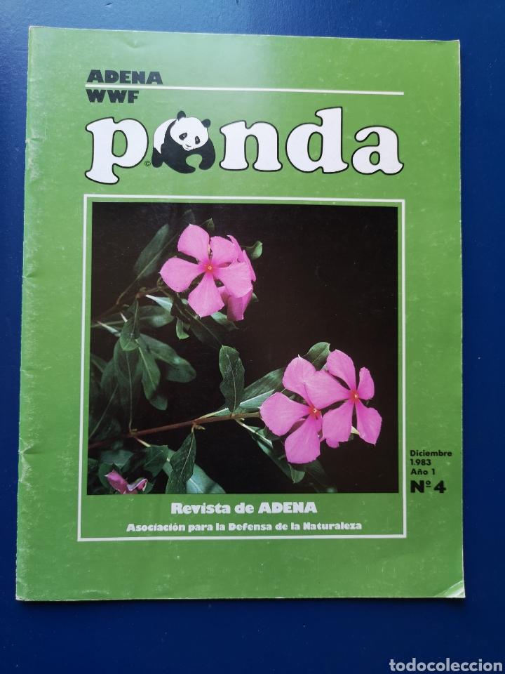 REVISTA ADENA WWF PANDA N°4 DICIEMBRE 1983 (Coleccionismo - Revistas y Periódicos Modernos (a partir de 1.940) - Otros)