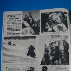 Coleccionismo de Revistas y Periódicos: RECORTE CLIPPING DE FAIKO REVISTA SEMANA Nº 1691 PAG. 32 L2. Lote 223937681