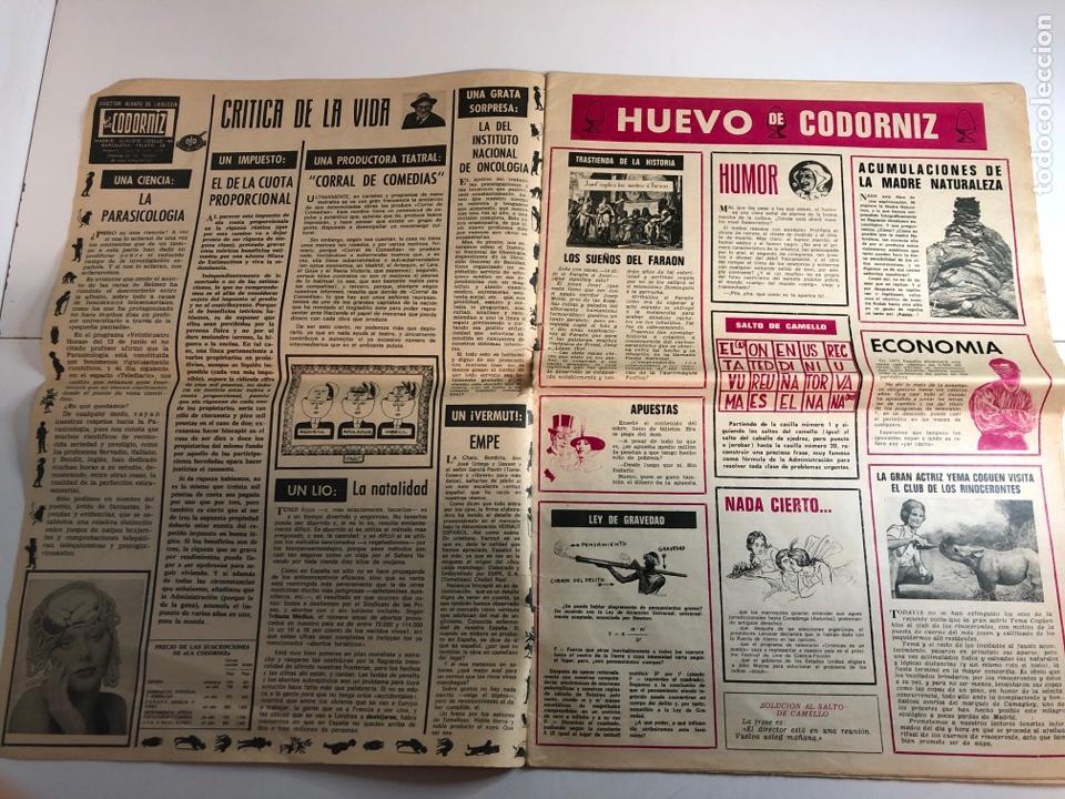 Coleccionismo de Revistas y Periódicos: La codorniz década de prensa humorística (8 de julio de 1973)número 1633 - Foto 2 - 225173445