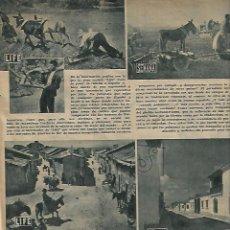 Coleccionismo de Revistas y Periódicos: AÑO 1951 BOXEO RAMON MARTINEZ LICOR 43 BRUNETE TORELLO FABRICA ESCUELA NEBRIJA LEBRIJA SEVILLA. Lote 53771727