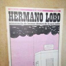 """Coleccionismo de Revistas y Periódicos: REVISTA """"HERMANO LOBO"""", NÚMERO 36 (GENIAL ESTADO) Nº 36 - SEMANARIO DE HUMOR DENTRO DE LO QUE CABE. Lote 232244100"""