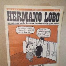 """Coleccionismo de Revistas y Periódicos: REVISTA """"HERMANO LOBO"""", NÚMERO 173 (BUEN ESTADO) Nº 173 - SEMANARIO DE HUMOR DENTRO DE LO QUE CABE. Lote 232244280"""