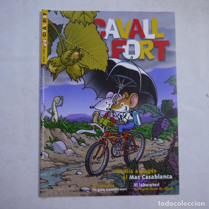 Coleccionismo de Revistas y Periódicos: LOTE 18 REVISTAS CAVALL FORT 2008 (AÑO CASI COMPLETO FALTAN 3 NÚMEROS) - Foto 15 - 234117090