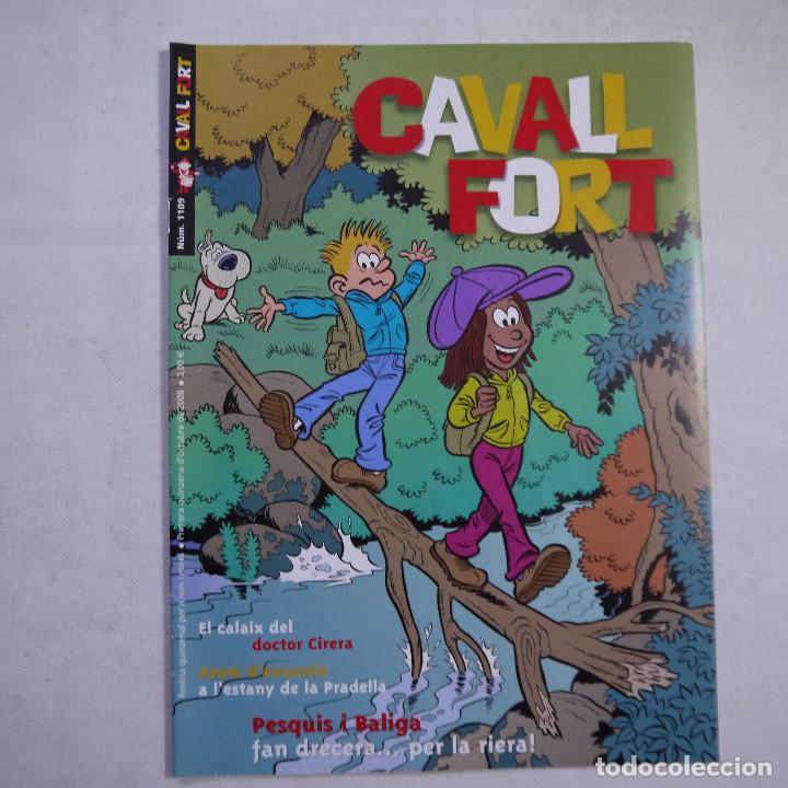 Coleccionismo de Revistas y Periódicos: LOTE 18 REVISTAS CAVALL FORT 2008 (AÑO CASI COMPLETO FALTAN 3 NÚMEROS) - Foto 16 - 234117090