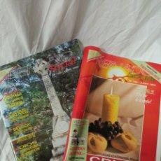 Coleccionismo de Revistas y Periódicos: REINADO SOCIAL. Lote 236219460