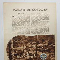 Coleccionismo de Revistas y Periódicos: 1933. HOJA. CÓRDOBA. EDUARDO BARO. PAISAJE DE CÓRDOBA. SIERRA. CAMPIÑA. REVISTA BLANCO Y NEGRO. Lote 239826925