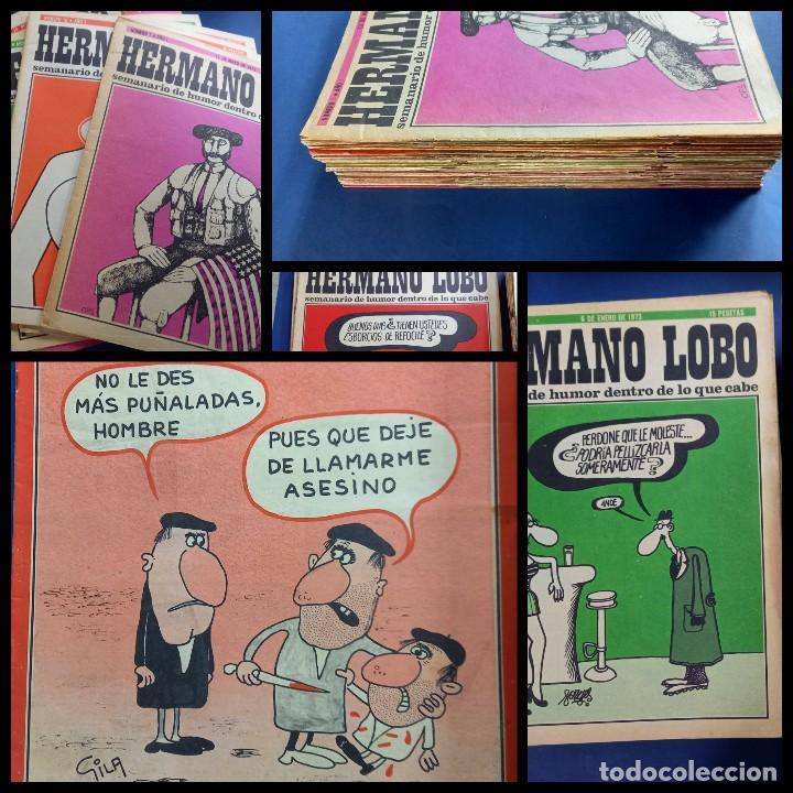 LOTE DE 45 - HERMANO LOBO- Nº 1-2-3-4-5...-VER NUMERACION- (Coleccionismo - Revistas y Periódicos Modernos (a partir de 1.940) - Otros)