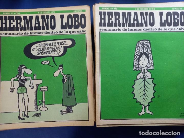 Coleccionismo de Revistas y Periódicos: LOTE DE 45 - HERMANO LOBO- Nº 1-2-3-4-5...-VER NUMERACION- - Foto 6 - 244791750