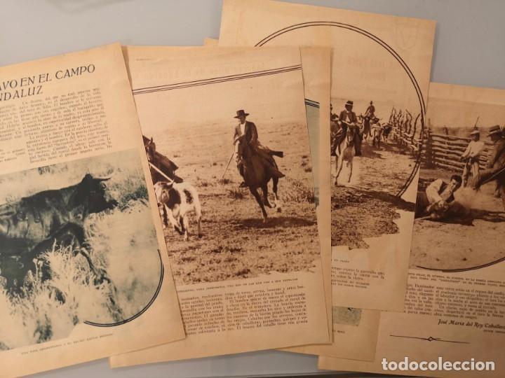 REPORTAJE REVISTA ORIGINAL ANTIGUO. EL TORO BRAVO EN EL CAMPO ANDALUZ, MANUEL MEJIAS Y EDUARDO MIURA (Coleccionismo - Revistas y Periódicos Antiguos (hasta 1.939))