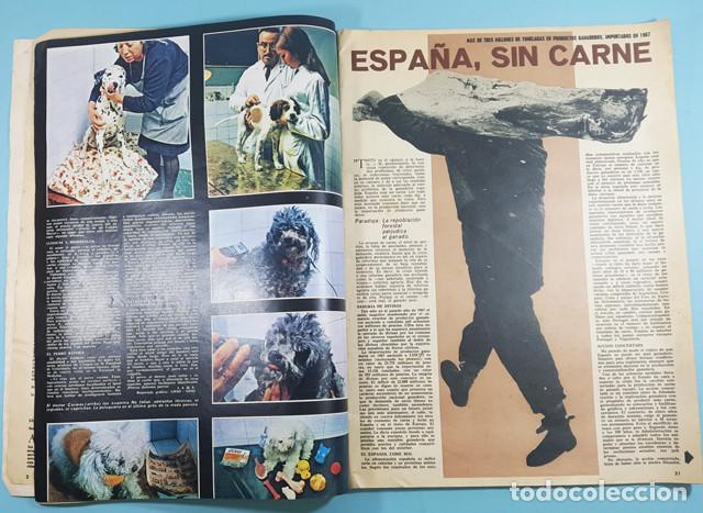 Coleccionismo de Revistas y Periódicos: REVISTA DON QUIJOTE Nº 8 28 NOVEIEMBRE 1968 64 PAG, EL INCOMODO ASUNTO DE LOS CURAS VASCOS - Foto 3 - 253415780