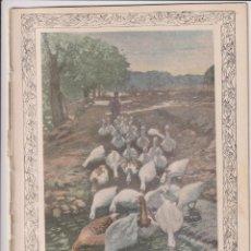 Coleccionismo de Revistas y Periódicos: NUEVO SIGLO Nº 14. MAYO 1901. (26,5X19) 20 PÁGINAS CON ILUSTRACIONES. Lote 253430825
