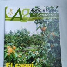 Coleccionismo de Revistas y Periódicos: REVISTA AG AGRICULTORES Y GANADEROS EL CAQUI UN CULTIVO EN EXPANSIÓN. Lote 254862380