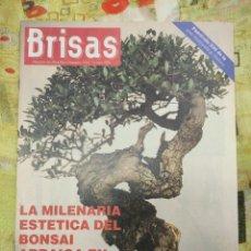 Coleccionismo de Revistas y Periódicos: REVISTA BRISAS. Lote 261818725