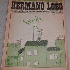 Coleccionismo de Revistas y Periódicos: REVISTA HERMANO LOBO - Nº 74 - AÑO II -- 1973. Lote 262629605