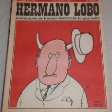 Coleccionismo de Revistas y Periódicos: REVISTA HERMANO LOBO - Nº 75 - AÑO II -- 1973. Lote 262629755