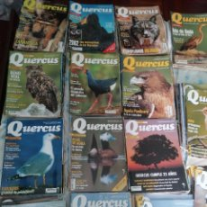 Coleccionismo de Revistas y Periódicos: LOTE 143 QUERCUS. DEL 181 AL 326. FALTAN ALGUNOS DE LOS 270. MÁS MONOGRÁFICOS.. Lote 263045020