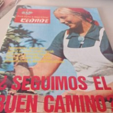 Coleccionismo de Revistas y Periódicos: REVISTA BOLETÍN DE CEDADE (1979) AÑO XII NUMERO 85. Lote 269060023