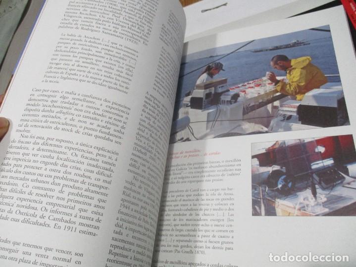 Coleccionismo de Revistas y Periódicos: GRIAL (10 tomos de revista + 3 tomos de cadernos) (gallego y castellano) W8176 - Foto 3 - 276791578