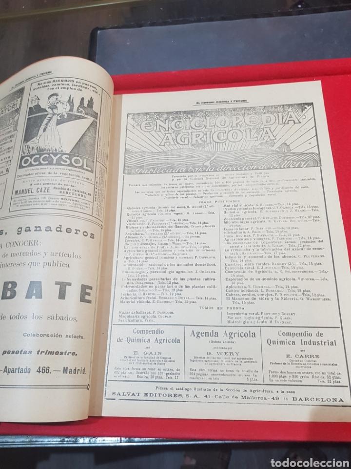 Coleccionismo de Revistas y Periódicos: Periódico agrícola y pecuario Madrid 1926 fotografías artículo Albufera Valencia ley de vino - Foto 2 - 276801163