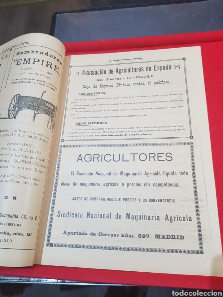Coleccionismo de Revistas y Periódicos: Periódico agrícola y pecuario Madrid 1926 fotografías artículo Albufera Valencia ley de vino - Foto 3 - 276801163