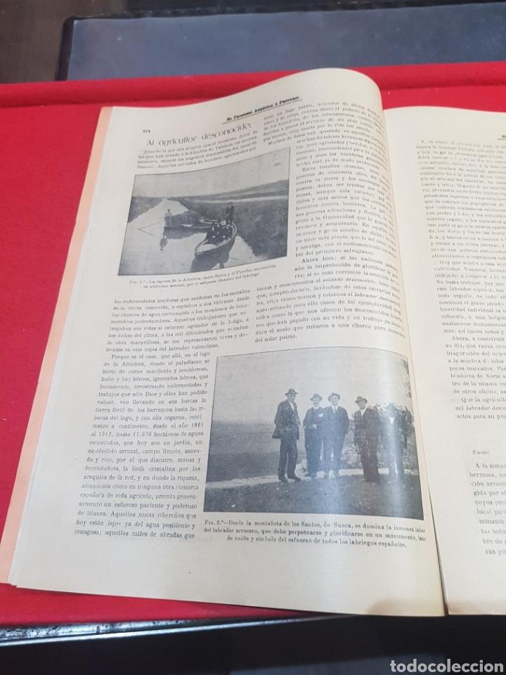 Coleccionismo de Revistas y Periódicos: Periódico agrícola y pecuario Madrid 1926 fotografías artículo Albufera Valencia ley de vino - Foto 4 - 276801163