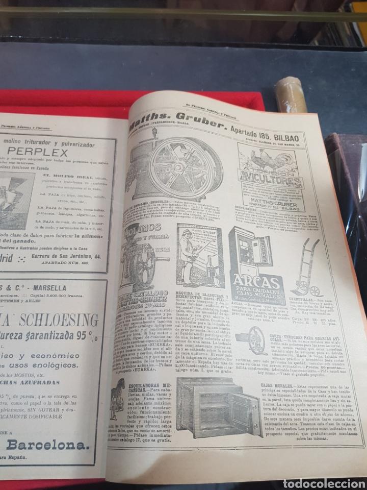 Coleccionismo de Revistas y Periódicos: Periódico agrícola y pecuario Madrid 1926 fotografías artículo Albufera Valencia ley de vino - Foto 5 - 276801163