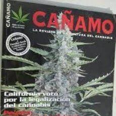 Coleccionismo de Revistas y Periódicos: CAÑAMO 156 LA REVISTA DE LA CULTURA DEL CANNABIS. Lote 295821848