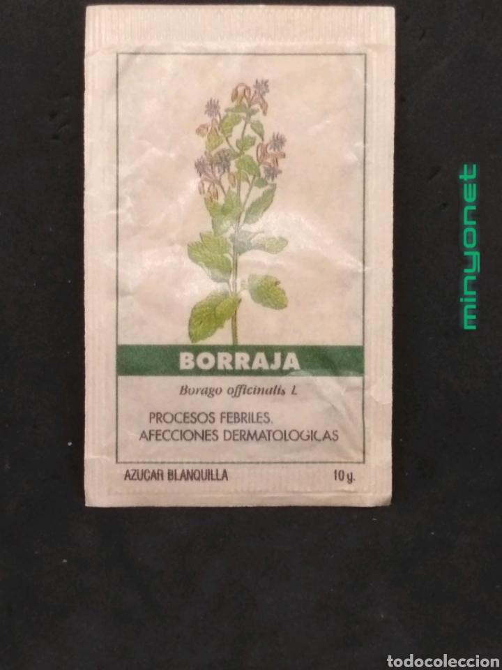 SOBRE DE AZÚCAR SERIE PLANTAS MEDICINALES - BORRAJA. CAFÉS BRASILIA. PRODUCTOS DEL CAFÉ, 10 GR. (Coleccionismos - Sobres de Azúcar)