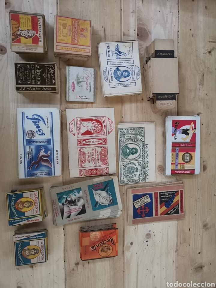 GRAN LOTE DE CAJETILLAS SIN USAR DE CIGARRILLOS DE LA MARCA LA REGENTA (Coleccionismo - Objetos para Fumar - Paquetes de tabaco)