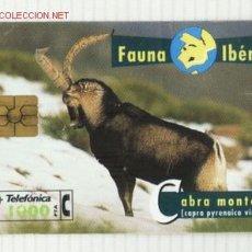 Tarjetas telefónicas de colección: TARJETA TELEFONICA FAUNA IBERICA . CABRA MONTES . Lote 2326590