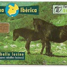 """Tarjetas telefónicas de colección: TARJETA TELEFÓNICA USADA """"FAUNA IBÉRICA - CABALLO LOSINO"""". Lote 29129412"""