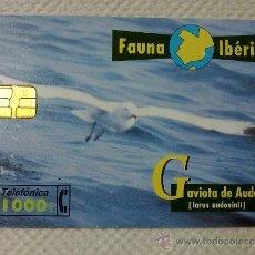 Tarjetas telefónicas de colección: TARJETA DE TELEFONOS AÑOS 90-FAUNA IBERICA, GAVIOTA- USADA. Lote 37943789