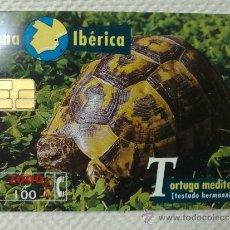 Tarjetas telefónicas de colección: TARJETA DE TELEFONOS AÑOS 90-FAUNA IBERICA,TORTUGA- USADA. Lote 37943883