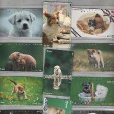 Cartes Téléphoniques de collection: LOTE DFE 11 TARJETAS DE PERROS. Lote 42541126