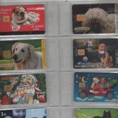 Cartes Téléphoniques de collection: LOTE DE 8 TARJETAS DE PERROS. Lote 42541142