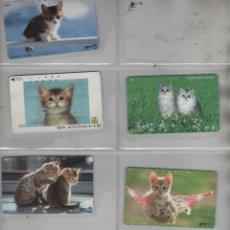 Cartes Téléphoniques de collection: LOTE DE 7 TARJETAS DE GATOS. Lote 42541149