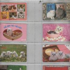 Cartes Téléphoniques de collection: LOTE DE 8 TARJETAS DE GATOS. Lote 42541159